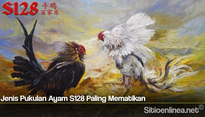Jenis Pukulan Ayam S128 Paling Mematikan
