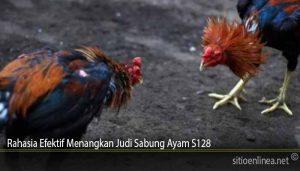 Rahasia Efektif Menangkan Judi Sabung Ayam S128