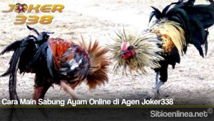 Cara Main Sabung Ayam Online di Agen Joker338
